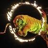 Цирки в Ворсме